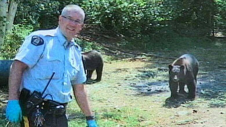 С енот медведями марихуаны плантация марихуану i заказать медицинскую