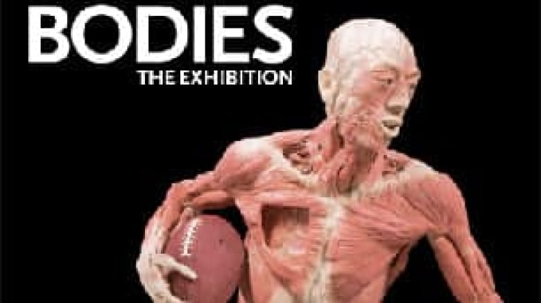Cadaver Exhibit Coming To Winnipeg Cbc News