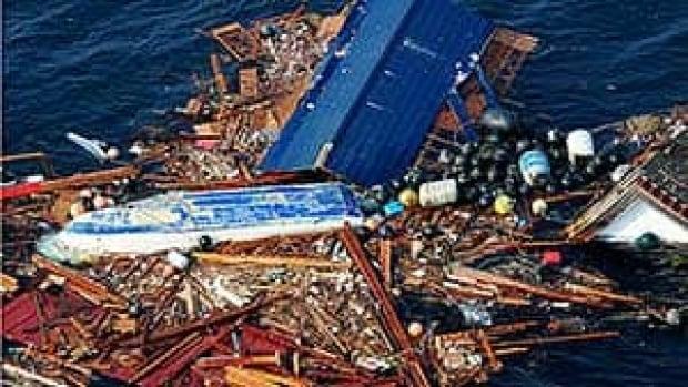 mi-bc-110408-cp-japan-debris