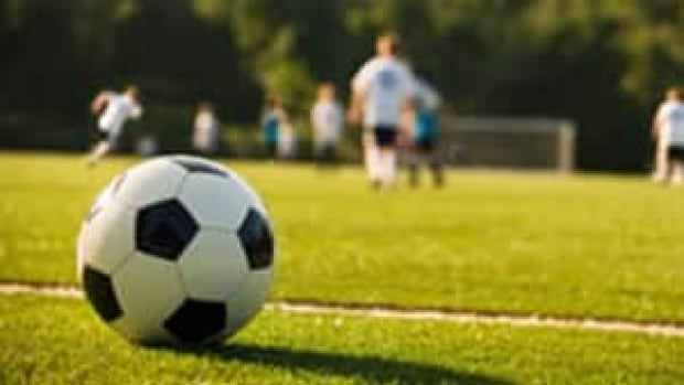 The Yukon Soccer Association is still looking for the right site in Whitehorse to build a  facility that would feature grass and artificial turf fields, an eight-lane running track and room for other sport facilities.