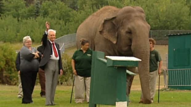 Bob Barker meets Lucy in September 2009. The former TV game-show host is among a the celebrities who want Edmonton's Valley Zoo to move the Asian elephant to a U.S. sanctuary.