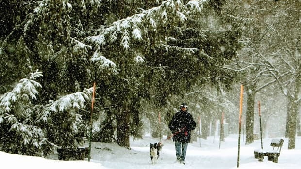 Anne Swannick of Ottawa walks her dog Jace through the falling snow and ice pellets in an Ottawa park on Monday.