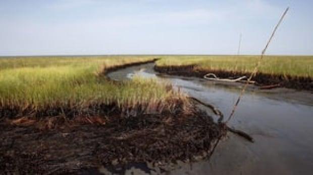 tp-bp-oil-marsh-cp-9136623