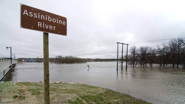The Assiniboine River threatens to breach the 18th Street Bridge in Brandon, Man. on May 11. The province has announced that a controlled breach of a dike is set to occur on May 12.