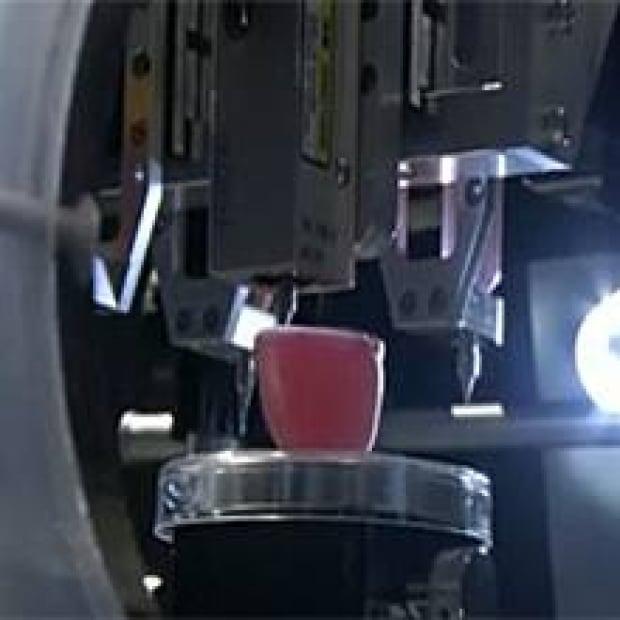 sm-kidney-printing-220px