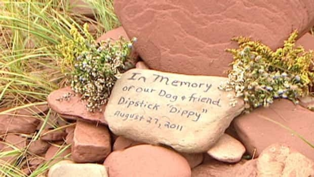 A memorial has been made for Dipstick, who was surrounded by seals and was not able to come back to shore.