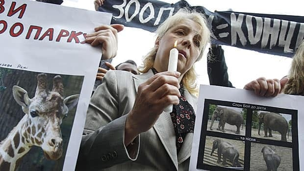 A woman holds a candle and photographs of animals, which died in the city zoo, during a protest against mistreatment of animals at the Kiev zoo on April 30, 2010.