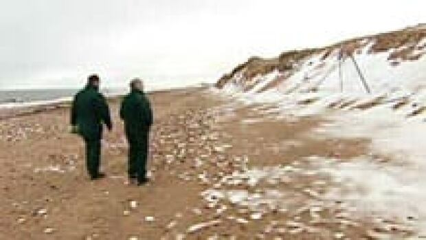 nb-si-damaged-beaches-220