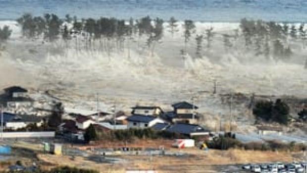 mi-300-tsunami-cp-rtr2jr2m