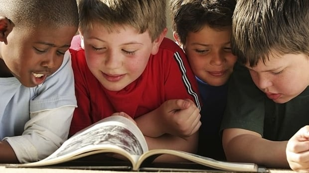 The Literacy Coalition of New Brunswick is calling for sustained emphasis on reading and creative writing in public schools.