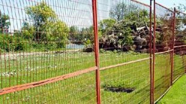 tp-cgy-bowriver-trees