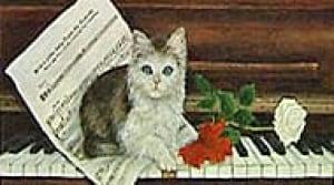 pm-kitten-cp-061210