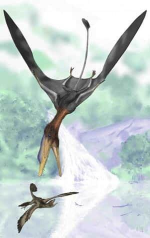 Darwinopterus-flying