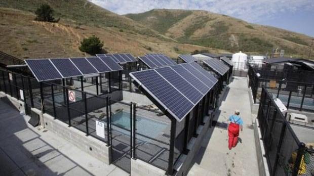 Solar Panel Ban On Farmland Will Cost Ontario Group