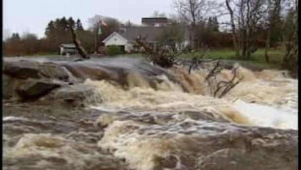 ns-more-flooding