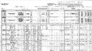 census-9011146-306