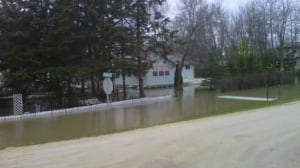 gimli-flooding-yard