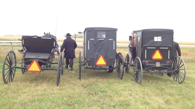 Members of this Mennonite community in rural Manitoba use horses and buggies as their main form of transportation. CBC News cannot identify the community or its members to protect the identities of about 40 children who were apprehended last year.