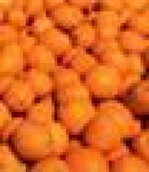 52-oranges