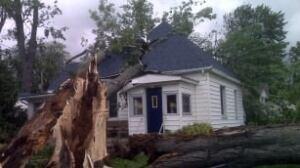 tp-wdr-leamington-house-tree