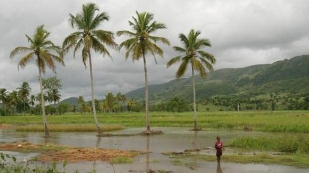 haiti-file-history-cp