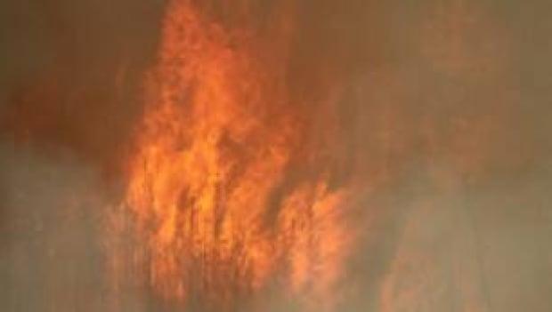 tp-edmonton-wildfire-smoke