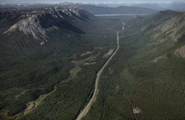 w-borealforest