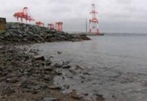 ns-hfx-harbour-swim