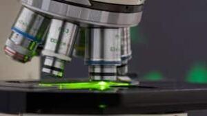 microscope-istock-306