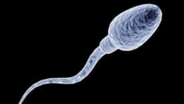 sperm-is-000002849083-275x206