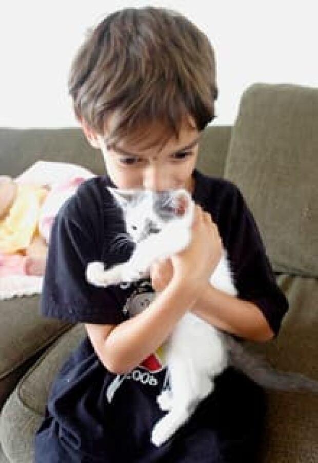 vet-kitten-saved220x320