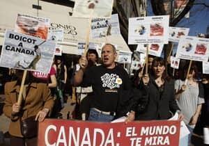 seal-hunt-protest-rtr2ckr0