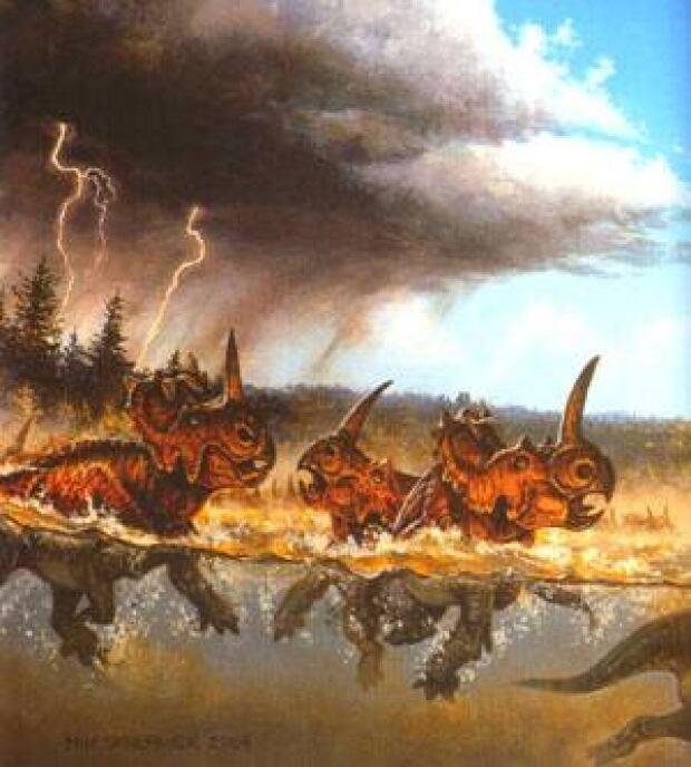 cgy-ceratopsian-dinos