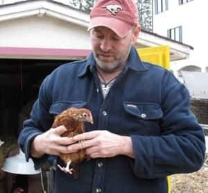 cgy-hughes-chicken