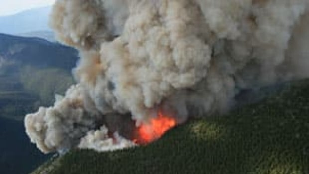 The B.C. Wildfire Service says the province spent $287 million fighting wildfires in 2015, more than twice the 10-year average.