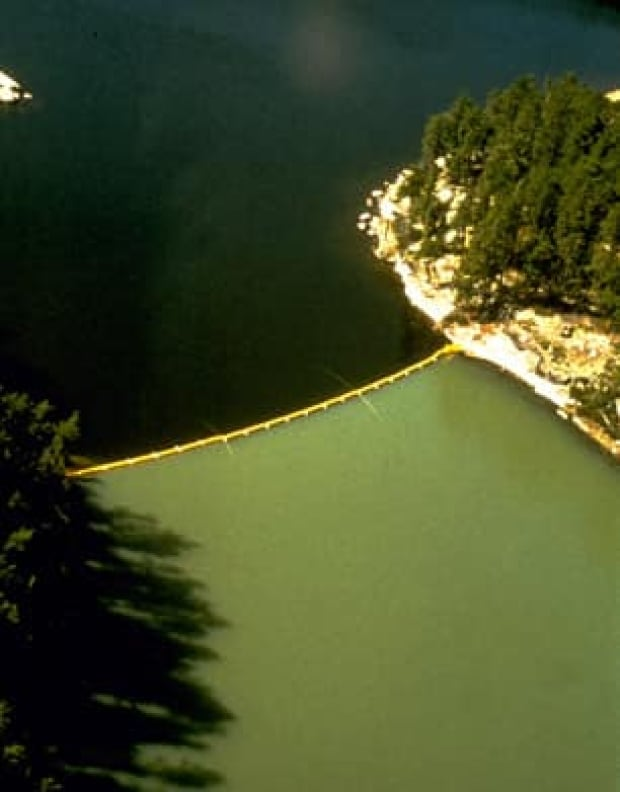 lake226-curtain