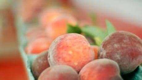 tp-peaches-cp-7030688