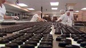 tp-cgy-bernard-callebaut-chocolate