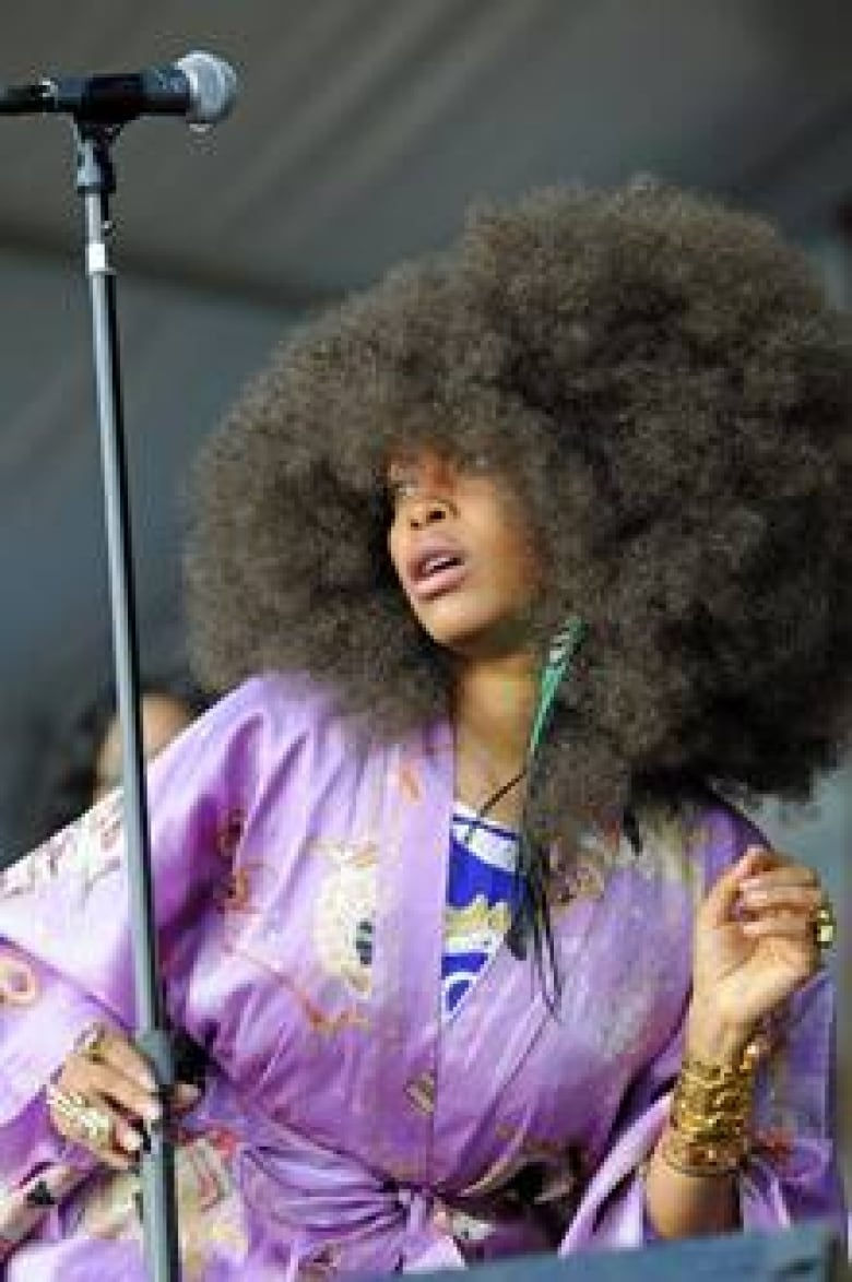 Police In Dallas Charged Erykah Badu After Shooting A Nude