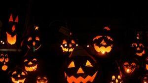 halloween jack o lantern pumpkins 20131019