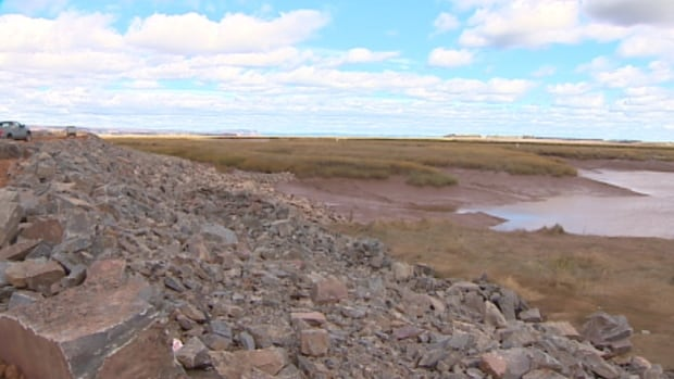 These dikes protect Annapolis Valley farm land from the rising tides.