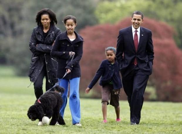 obama-dog-cp-w-6560986