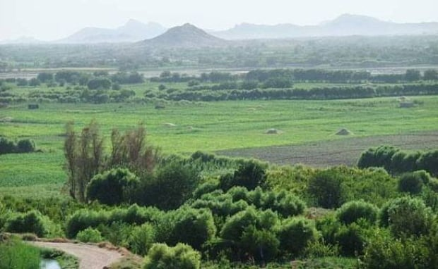 Arghandab-afghan-cbc