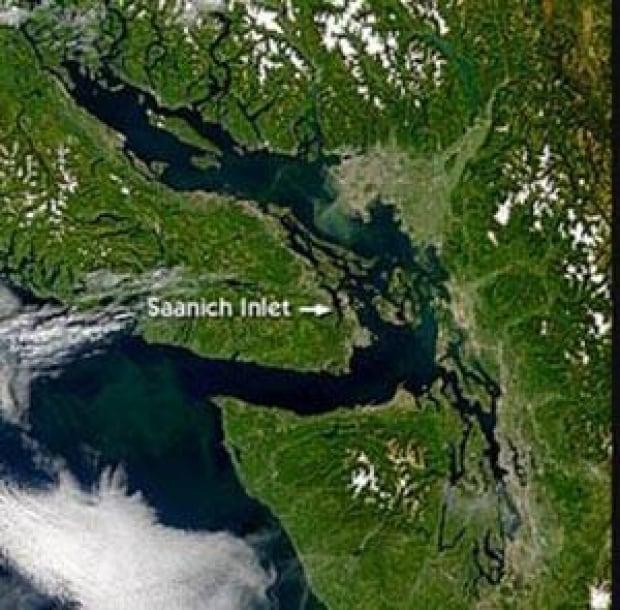 saanich-inlet-vancouver-isl