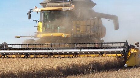 Harvest 2013 in Saskatchewan