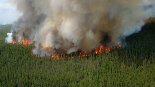 A fire near Wrigley, N.W.T., is shown the way it looked earlier in the summer of 2013. Officials say the flames are now underground, but still burning and showing no signs of stopping.