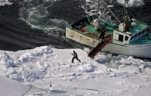 seal-hunt-sized