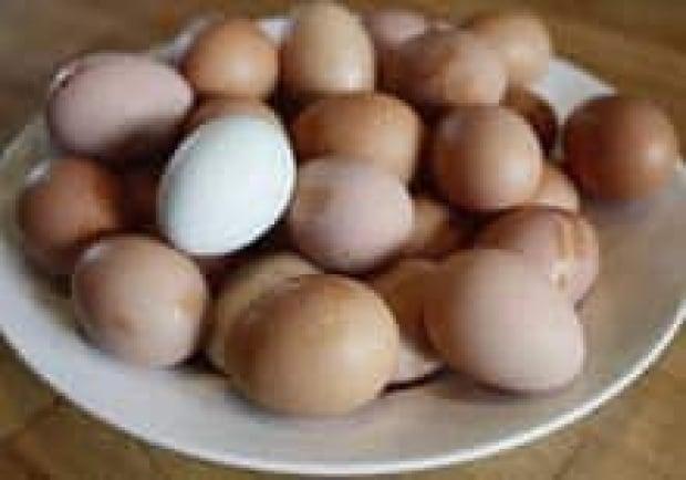 eggs-cp-6149355