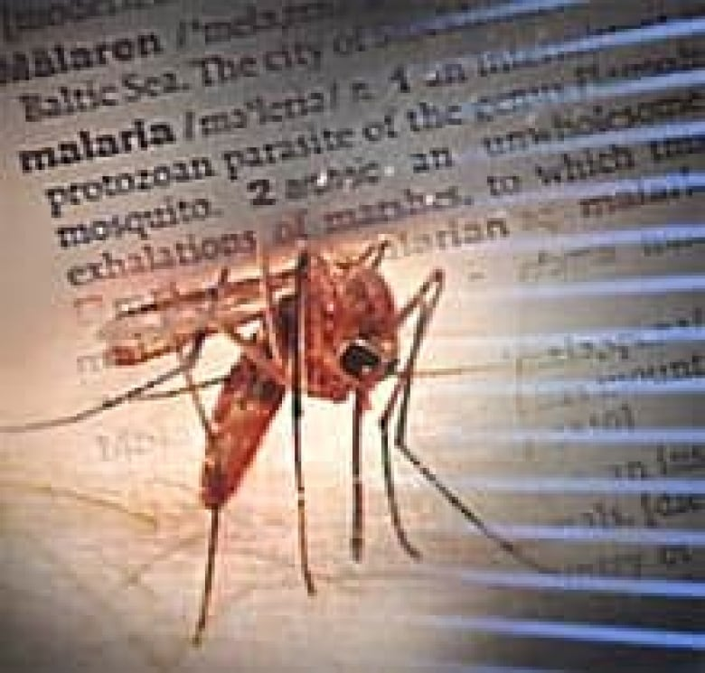 Warnings issued after quebecer contracts malaria in dominican malaria is most commonly transmitted to humans through the bite of an infected mosquito cbc publicscrutiny Gallery