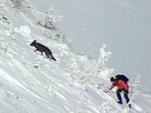 bc-080108-avalanche-rescue1